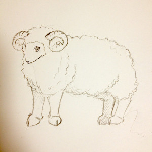 sheep_advent01