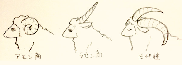 sheep_advent01-2